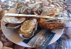 fort-royer-degustation-huitres-oleron-speciales-de-claires.jpg