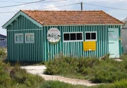 fort-royer-degustation-huitres-oleron-cabanes-ostreicoles.jpg
